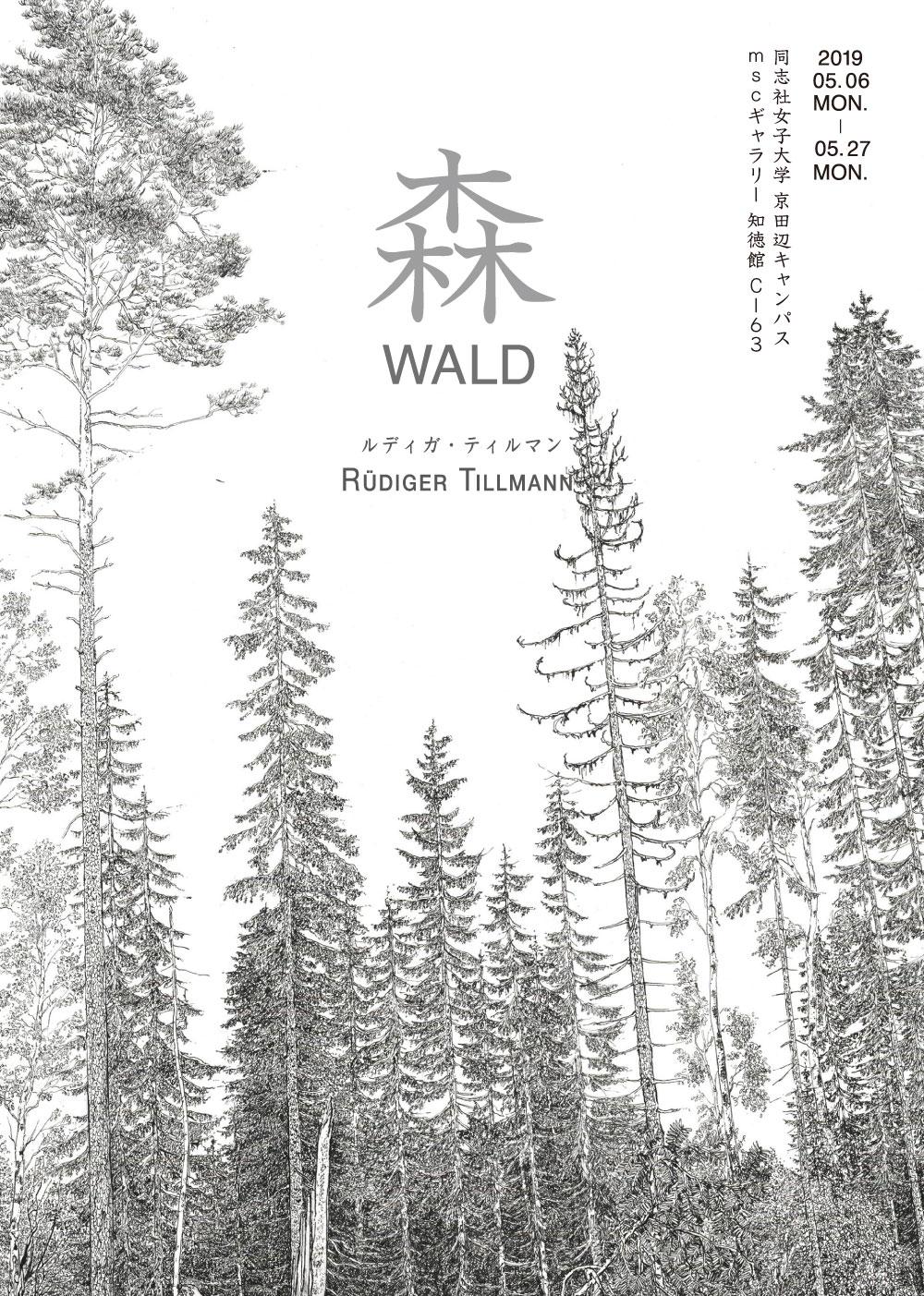 森 WALD - ルディガ・ティルマン展